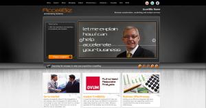 Accelibiz Site